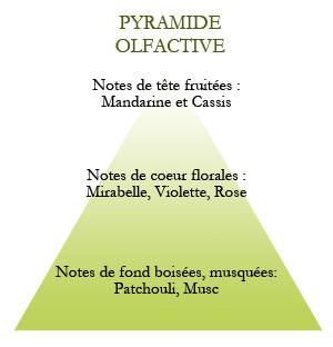 Pyramide Olfactive