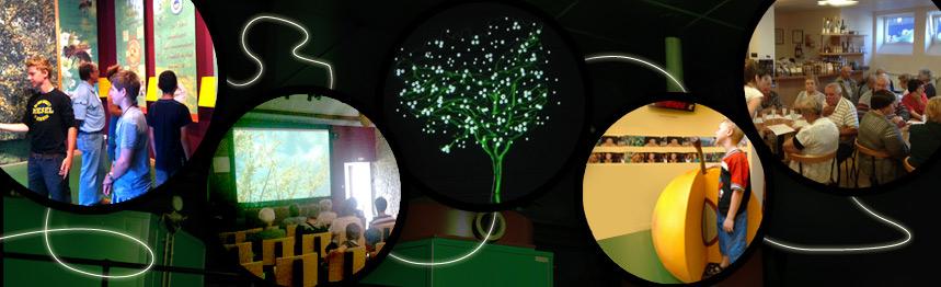 visitez la maison de la mirabelle